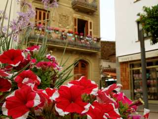 Flowers in the old town