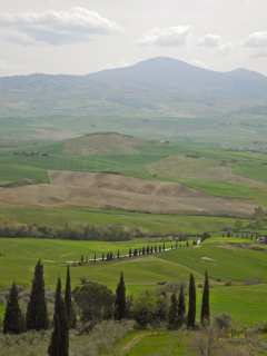 Land in the foothills of the Apennines. Tuscany