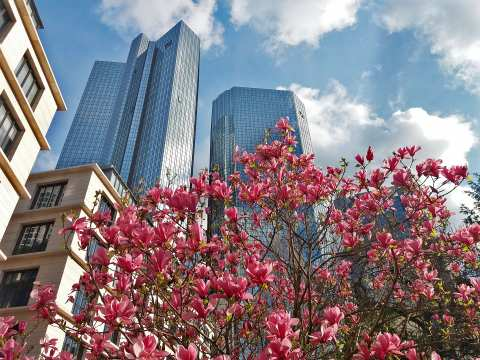 Germany. Frankfurt am Main - Deutsche Bank