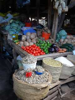 Vegetable counter